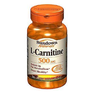 Sundown naturals l-carnitine, 500 mg, caplets, 30 ea