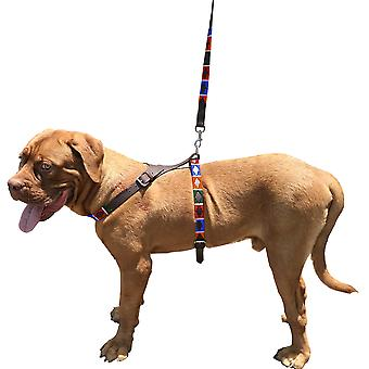 Carlos diaz genuine leather waxed embroidered polo dog matching easy control no pull back harness and lead set cdbh4