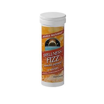 Quelle Naturals Wellness Fizz Wafer, 10 Wafer