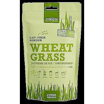 Purasana Blé à jus d'herbe en poudre 200 gr