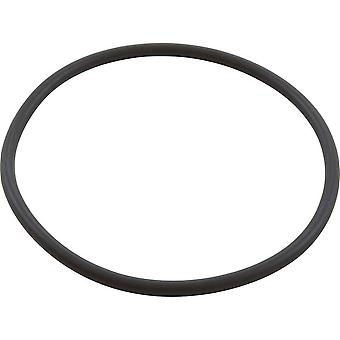 Speck Pumps 2901341220 105 x 5MM Lid O-Ring