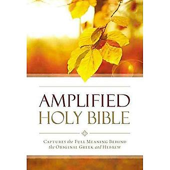Forsterket oppsøkende Bibelen, Paperback