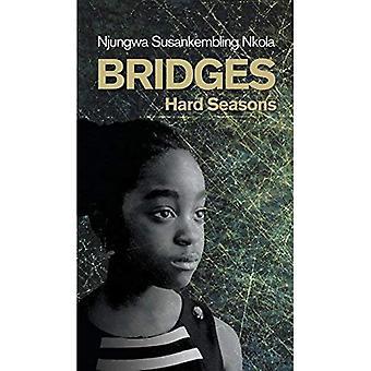 Bridges: Hard Seasons