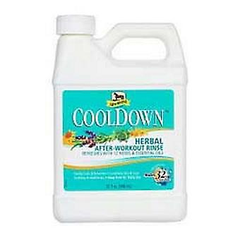 Absorbine CoolDown Horse Neste