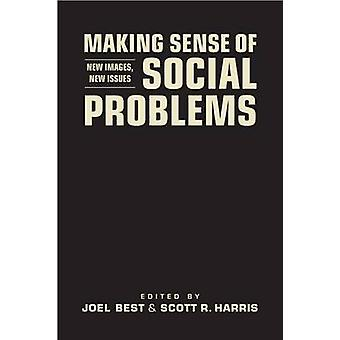 Making Sense of Social Problems - New Images - New Issues by Joel Best