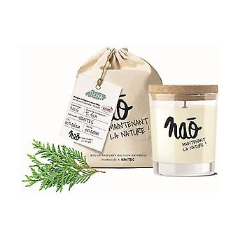 Thuja natural scented candle large model 40 h 200 g