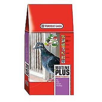 Versele Laga Mp Mutine Plus Ic (Muda) (Birds , Bird Food)