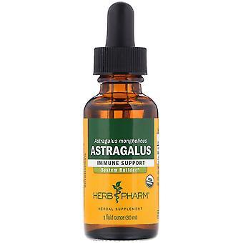 Herb Pharm, Astragalus, 1 fl oz (30 ml)