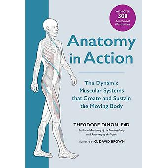 Anatomy in Action by Theodore Dimon Jr.