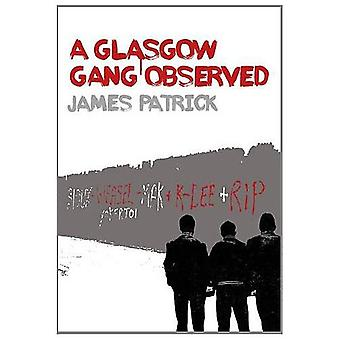 A Glasgow Gang Observed