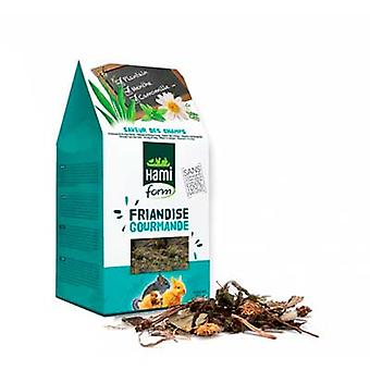 Hami Form Snack Friandises Gourmande Taste Of The Countryside (Small pets , Treats)