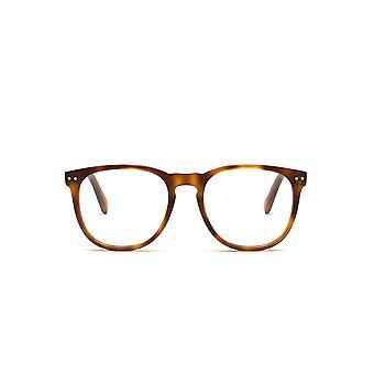 Celine CL50021I 053 Blonde Havana Glasses