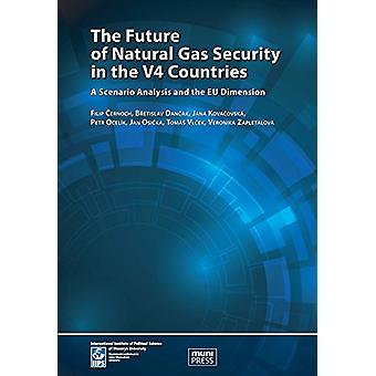 The Future of Natural Gas Security in the V4 Countries - A Scenario An