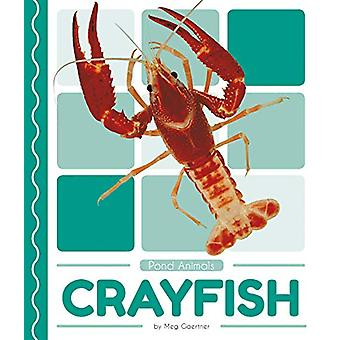 Pond Animals - Crayfish by Meg Gaertner - 9781641855778 Book