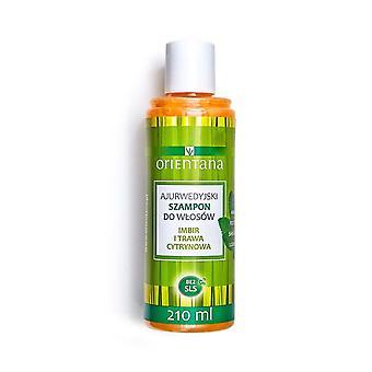 Ayurvedic Hair Shampoo Ginger & Lemongrass, 210 Ml