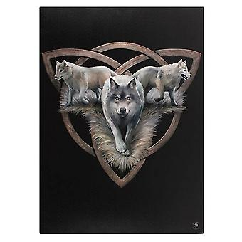 Anne Stokes 50x70cm Wolf Trio Canvas