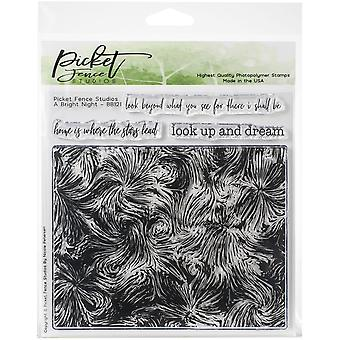 Picket Fence Studios A Bright Night Clear Stamps