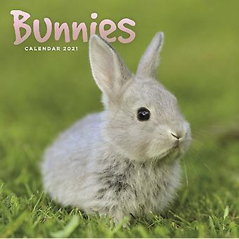 Bunnies Mini Square Wall Calendar 2021