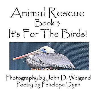 Animal Rescue - Book 3 - It's For The Birds! by John D. Weigand - 978