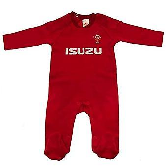 Wales RU Sleepsuit 9/12 mths PS
