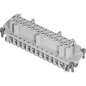 Amfenol C146 10B024 002 1-1 Socket Insert Amfenol C146 10B024 002 1 C146 10B024 002 1 Conectori greleConectiori industrialiConectația de încărcare