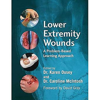 Lower Extremity Wounds: A Problem Based Approach