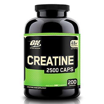 Optimum Nutrition Creatine Food Supplement