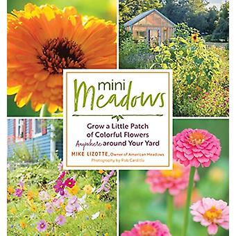 Mini Meadows Grow a Little Patch of Colorful Flowers Anywhe by Mike Lizotte