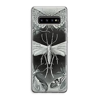 Samsung Galaxy S10 Plus Custodia trasparente (Soft) - Haeckel Tineida