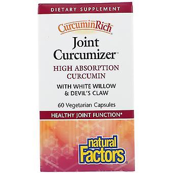 Natural Factors, CurcuminRich, Joint Curcumizer, 60 Vegetarian Capsules