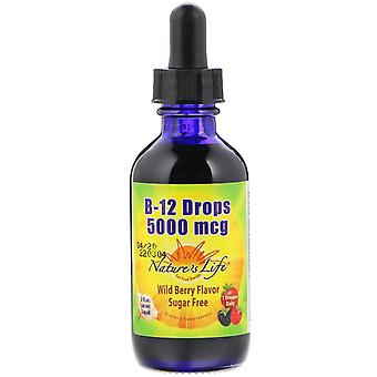 Nature's Life, B-12 Drops, Wild Berry Flavor, 5,000 mcg, 2 fl oz (60 ml)