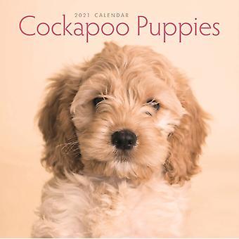 Cockapoo Puppies Mini Square Wall Calendar 2021