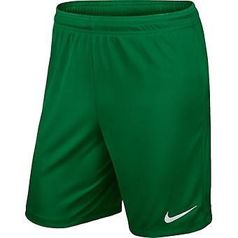 Nike Park II Junior 725988302 training all year boy trousers
