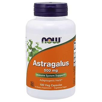 Now Foods Astragale 500 mg 100 Capsules