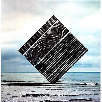 Fink - Perfect Darkness [Vinyl] USA import