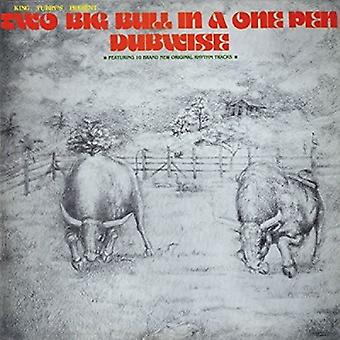 King Tubby - Two Big Bull in a One Pen (Dubwise Versions) [CD] USA import