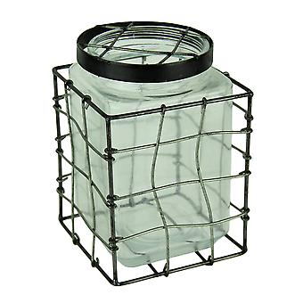 Square Glass Stem Jar Flower Vase in Metal Cage Frame