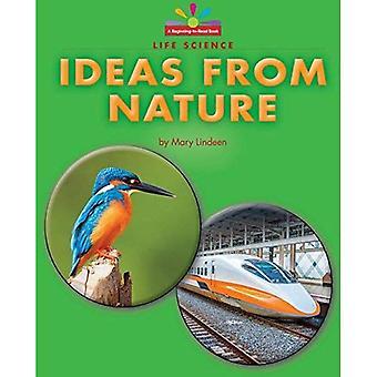 Ideeën uit de natuur (begin te lezen, lezen en ontdekken - Science)