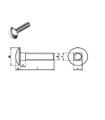 Mushroom Head Square Neck Screw  (cup Square / Coach Bolts) M8 X 50 Mm A4 Stainless Steel Din603