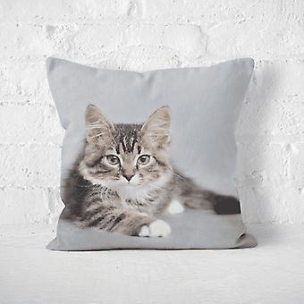 Meesoz pudebetræk-rolig kat