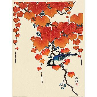 Bird and Red Ivy Kunstdruck Ohara Koson  Kleinformat 40 x 30 cm