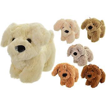 Snuggle Pals Plush Puppy Dog Soft Toy 22cm (One at Random)