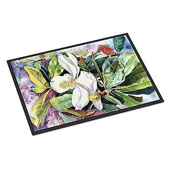 Carolineøerne skatte 8700MAT Magnolia indendørs eller udendørs Mat 18 x 27