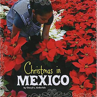 Christmas in Mexico (First Facts: Christmas Around the World)