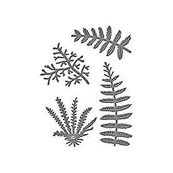 Spellbinders Die D-Lites Ferns (S2-197)