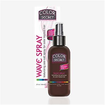 Color Secret Wave Hair Spray