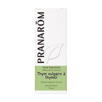Thyme thymol essential oil 10 ml of essential oil