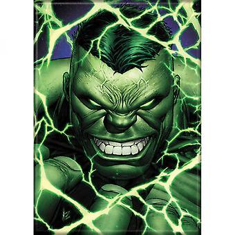 Marvel Comics Ultimate Hulk hahmo muotokuva magneetti