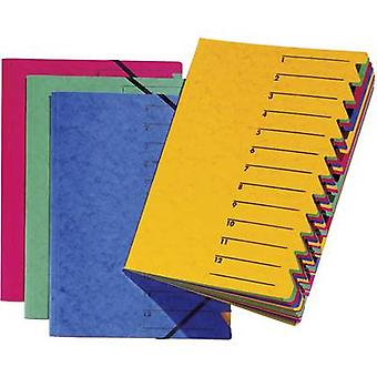 PAGNA P2413102 Organiser Blue A4 Chipboard No. of compartments: 12
