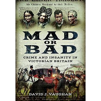 Mad or Bad - Crime and Insanity in Victorian Britain by David J. Vaugh